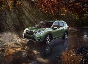 Car Transport Your Forester