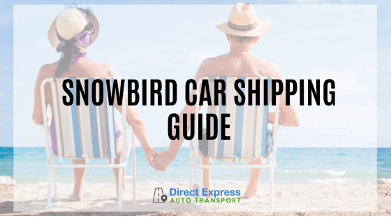 Snowbird Car Shipping Guide - A Couple Sitting On A Beach Holding Hands