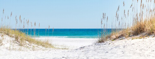 Dunes to the blue ocean and oats of Pensacola Fl Beach